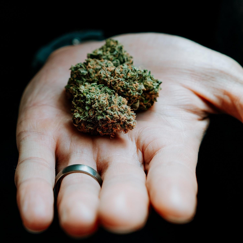 Marihuana lecznicza co to jest